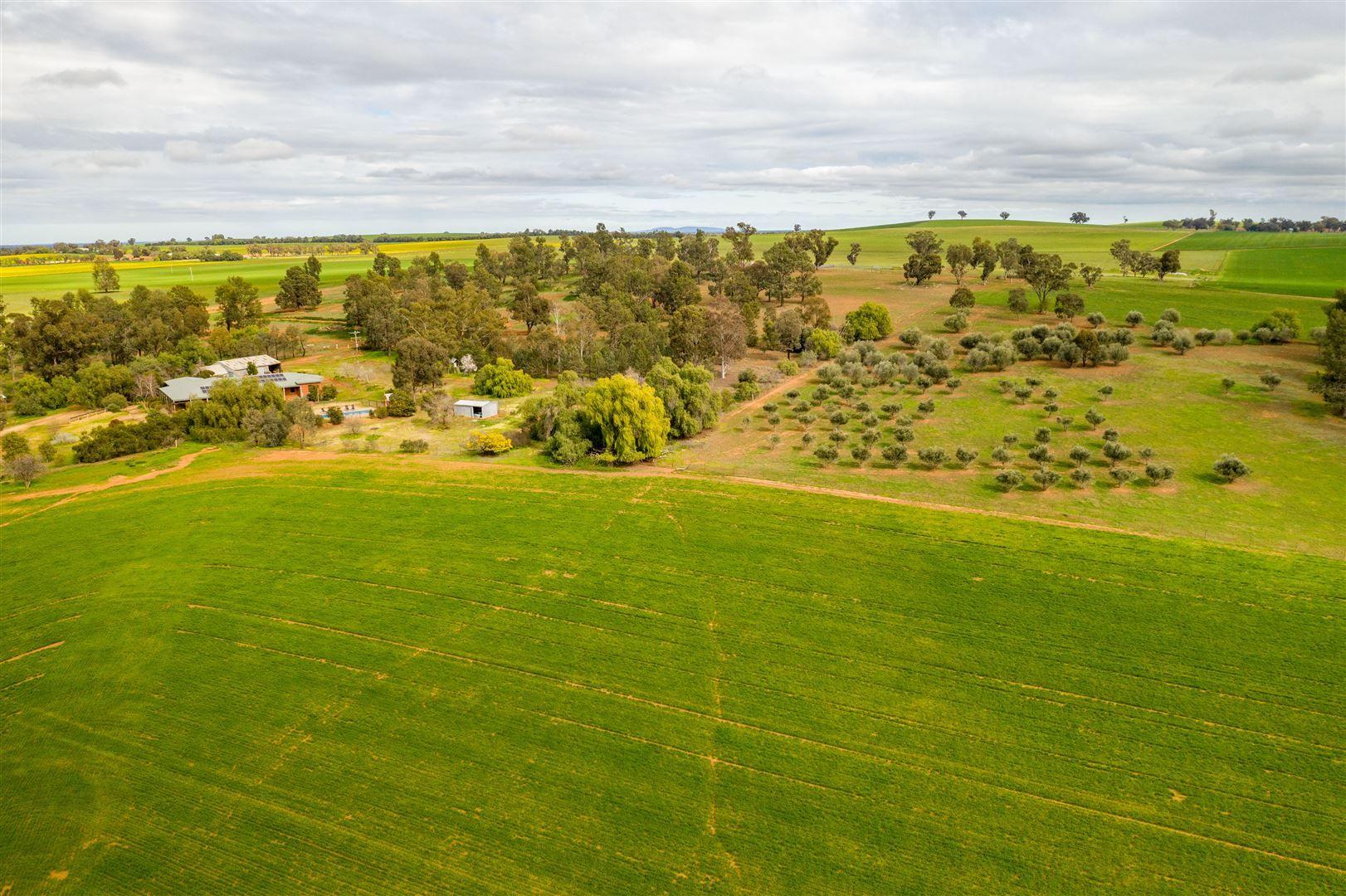 Pleasant View Tooyal Road, The Gap via, Wagga Wagga NSW 2650, Image 0
