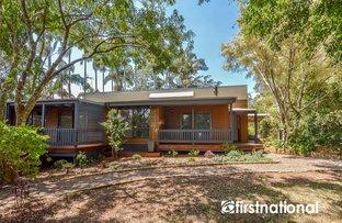 Picture of 2-4 Katmai Court, Tamborine Mountain QLD 4272