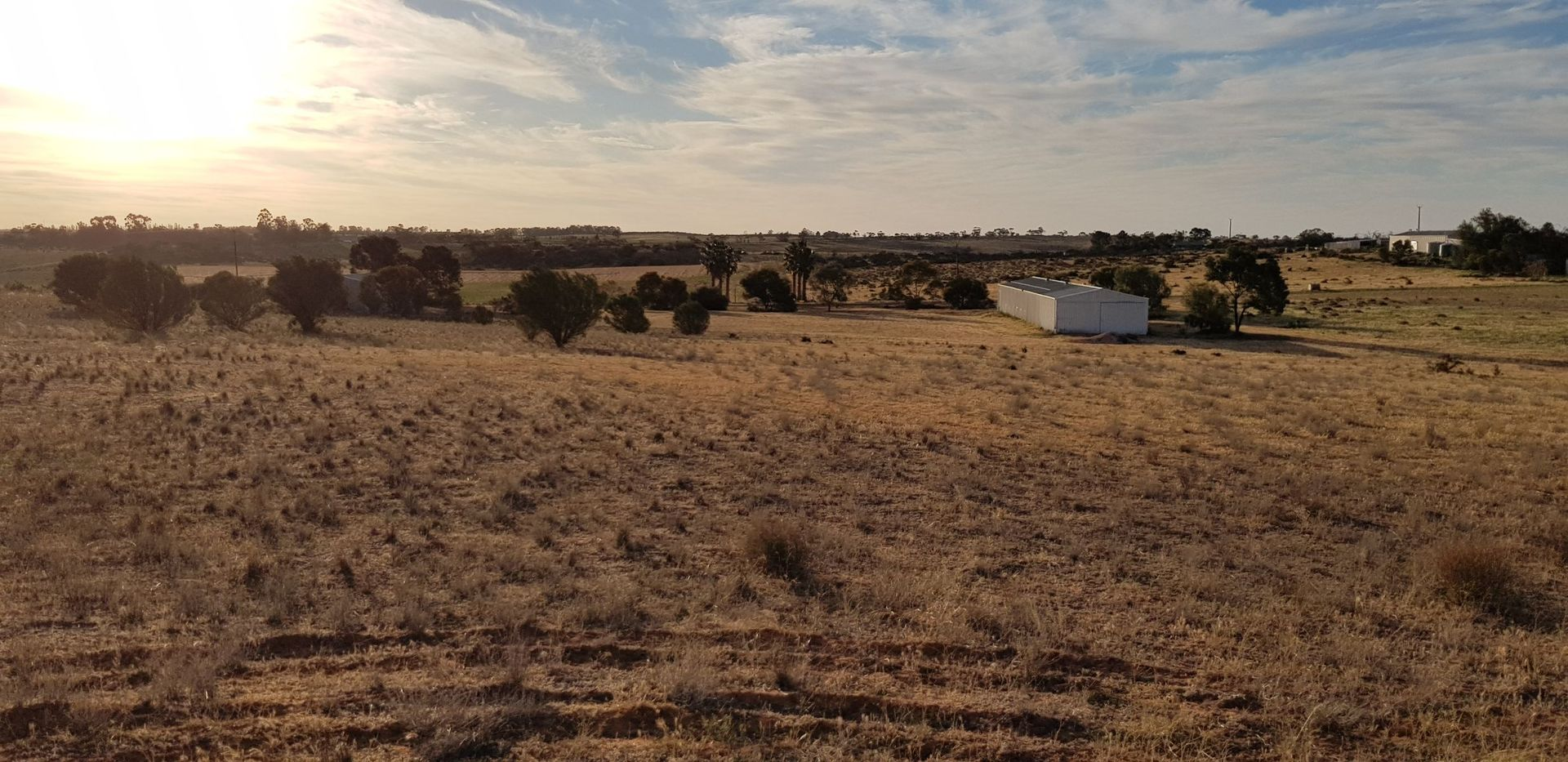 LOT/50 Twigden Road, Waikerie SA 5330, Image 1