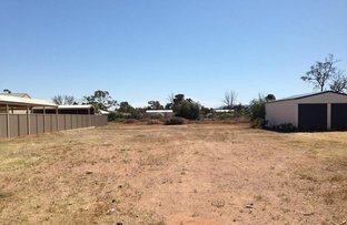 Picture of 5 Beckman Street, Stirling North SA 5710