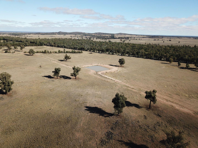 'Euri Euri' 7630 Newell Hwy, Tomingley NSW 2869, Image 0