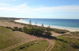 Picture of Lot 3 Kiandra Road & Lot 4 South Coast Road, Lipson SA 5607
