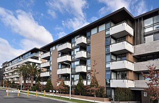 Picture of 11 bond street, Caulfield North VIC 3161