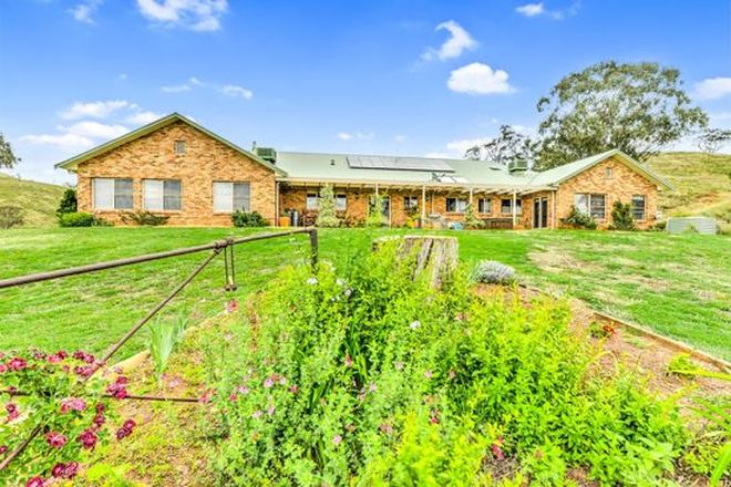 Picture of 2079 Nundle Rd, DUNGOWAN NSW 2340