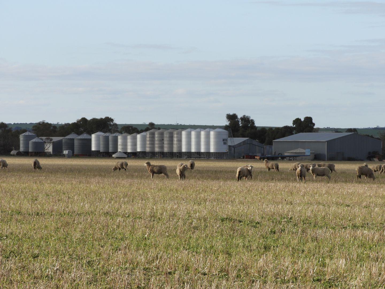 Di Russo Farms, Hyden WA 6359, Image 0