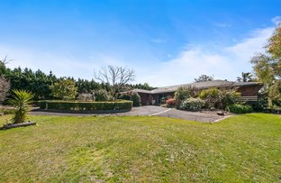 Picture of 126 Bungower Road, Somerville VIC 3912