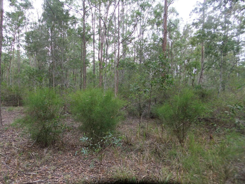 28 Gilliland Court, Blackbutt QLD 4314, Image 2