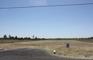 Picture of Lot 13 Bottletree Road, Emerald QLD 4720