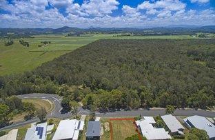 Picture of 48 Macadamia Drive, Pottsville NSW 2489