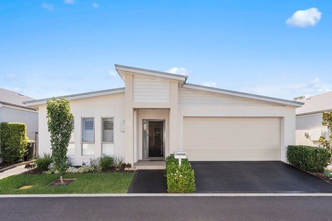 Picture of 12 Dragontail Lane, LEPPINGTON NSW 2179