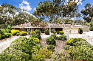 Picture of 16 Peppermint Drive, Gawler Belt SA 5118