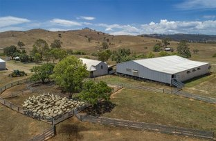 Picture of 2755 Triamble Road, Triamble NSW 2850