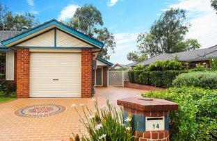 Picture of 14 Liquidamber Drv, Narellan Vale NSW 2567