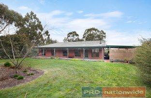 Picture of 19 Cynthia Court, Haddon VIC 3351