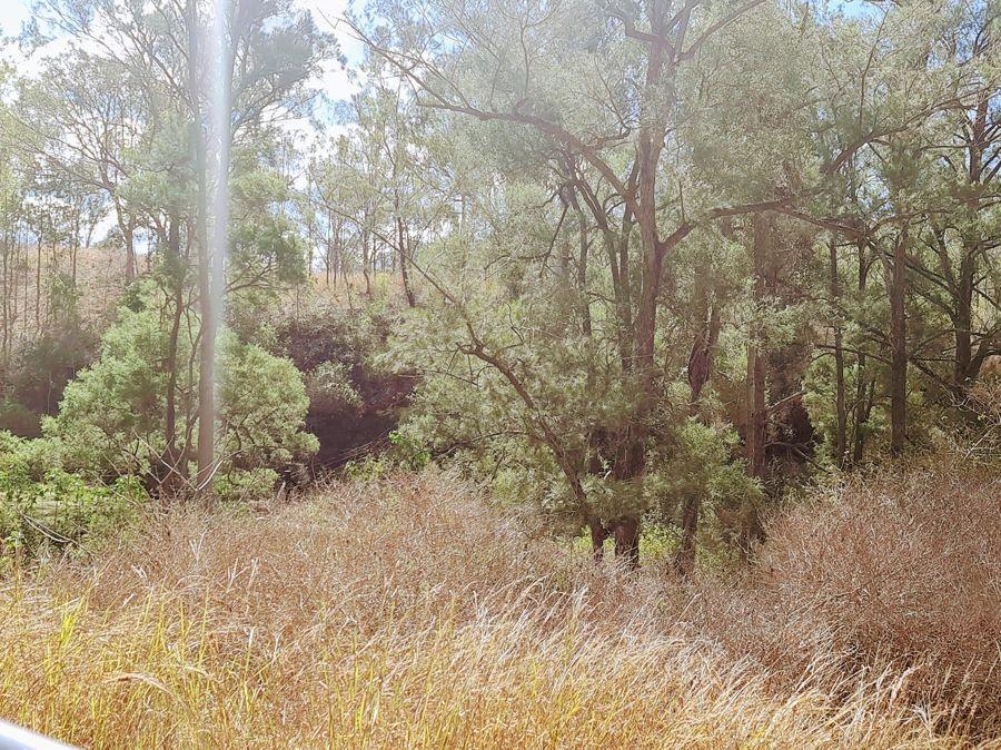 Lot 10 Possum Bush Road, Moore QLD 4306, Image 2