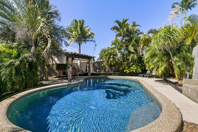 Picture of 23 Tobermory Court, MERRIMAC QLD 4226