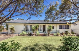 Picture of 181 Raceview Street, Raceview QLD 4305