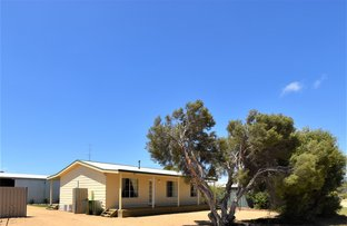 Picture of 63 Scarlet Runner Road, The Pines SA 5577