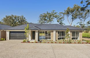 Picture of 6/23 Quandong Place, Kew NSW 2439