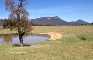 Picture of 715 Genowlan Rd, Glen Alice NSW 2849