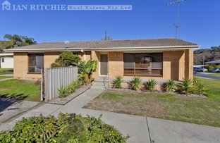 Picture of 3 Lacebark Court, Thurgoona NSW 2640