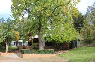 Picture of 7 Albury Street, Tumbarumba NSW 2653