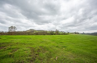 Picture of 493 Rocks Road, Pie Creek QLD 4570