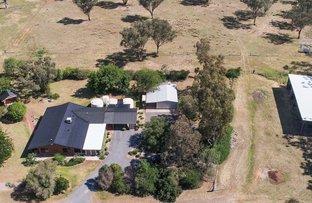 Yarrabee, 1002 Warral Road, Tamworth NSW 2340