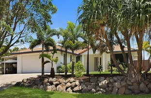 Picture of 84 Mountain Ash Dr, Mountain Creek QLD 4557
