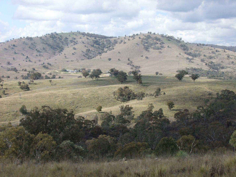 1931 The Bridle Track, Bruinbun NSW 2795, Image 0