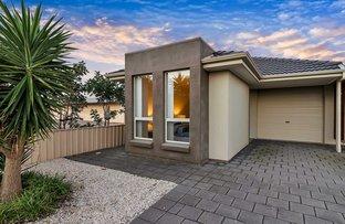 3 Douglas Street, Flinders Park SA 5025