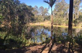 Belli Park QLD 4562