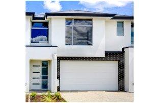 2a Don Terrace, Morphettville SA 5043