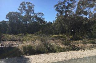 604 Thanowring Road, Temora NSW 2666