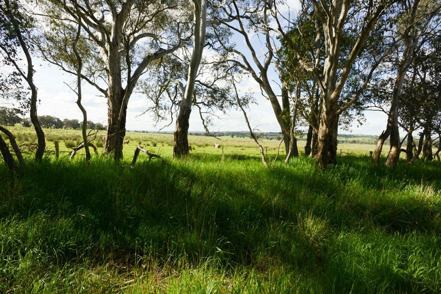 6/248 Back Brawlin Road, Cootamundra NSW 2590, Image 1