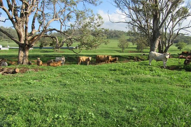 Picture of 512 Ogunbil Road, DUNGOWAN NSW 2340