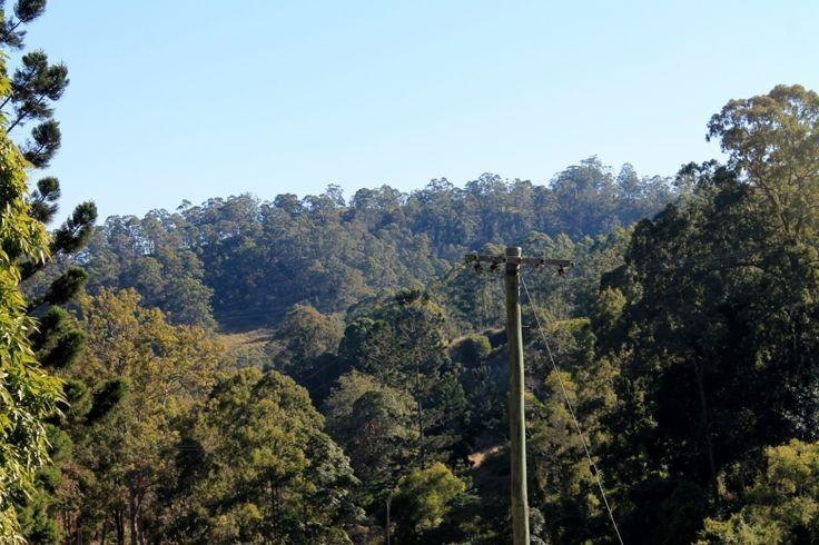 LOT 124 Quarry Road, Kyogle NSW 2474, Image 2
