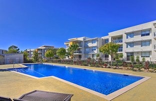 Picture of 534/66 Sickle Avenue, Hope Island QLD 4212