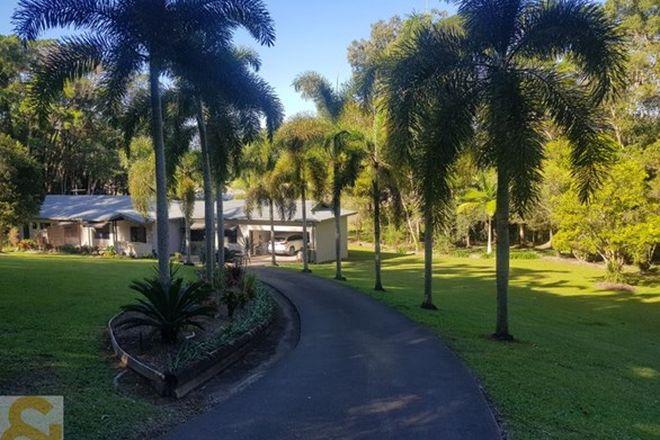 Picture of 66 Whiteley Road, MIALLO QLD 4873