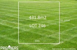 Lot 246/. Proposed Road, Spring Farm NSW 2570