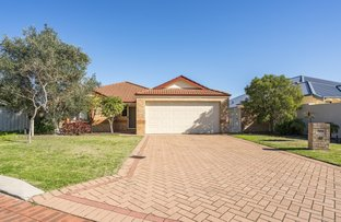 Picture of 28 Calautti Court, Gwelup WA 6018