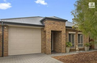 Picture of 39 Norrie Avenue, Clovelly Park SA 5042
