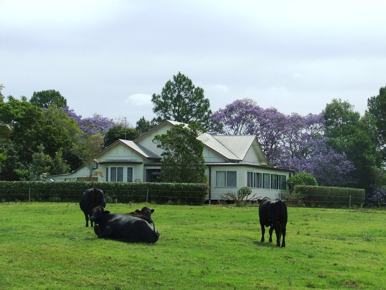 Rawdon Island NSW 2446, Image 0