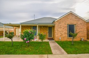 Picture of 2/125 Hovell Street, Echuca VIC 3564
