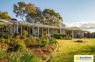 Picture of 11 Merriman Place, Murrumbateman NSW 2582