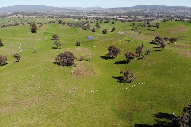 Picture of 128 Brungle Road, BOMBOWLEE NSW 2720