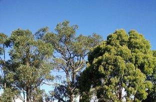 Picture of 910A Eureka Street, Ballarat East VIC 3350