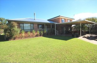 Picture of Lot 1 Maguire Lane, Stanthorpe QLD 4380