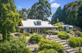 Picture of 337 Aire Settlement Road, Johanna VIC 3238