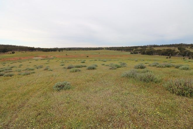 Picture of 16C Calder Highway, WEDDERBURN VIC 3518